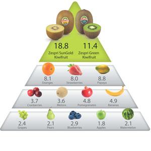 z-health-pyramid[1]