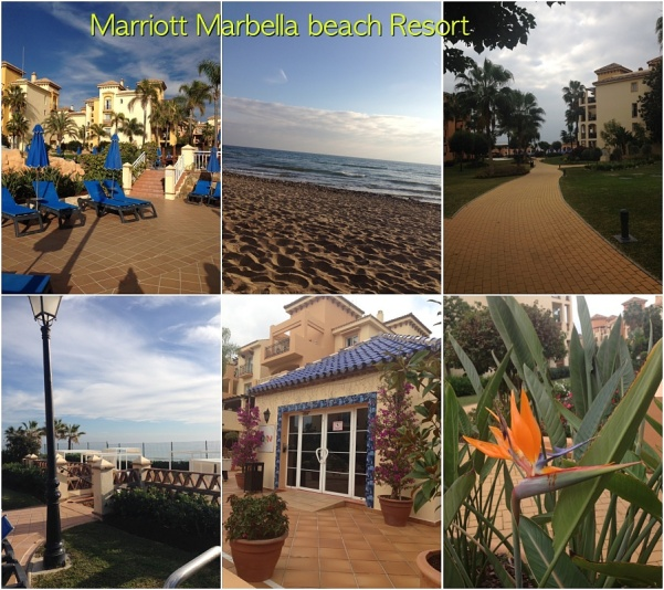Marriott collage